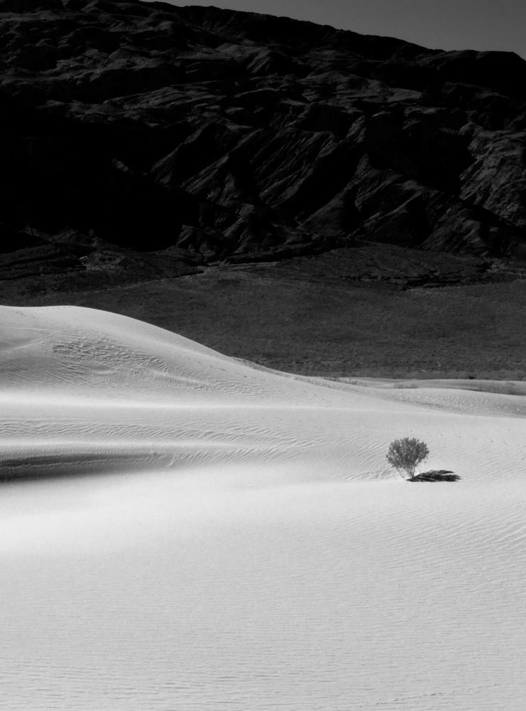 Mesquite Dunes, Death Valley, 2013